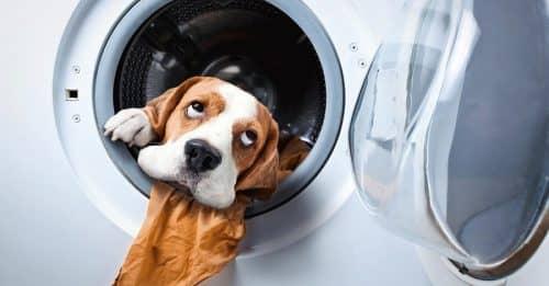 Что можно стирать в машинке?