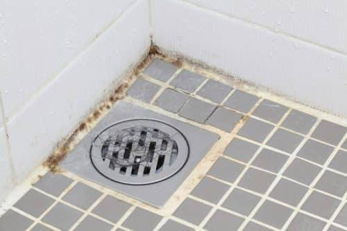 Водка для удаления плесени в ванной