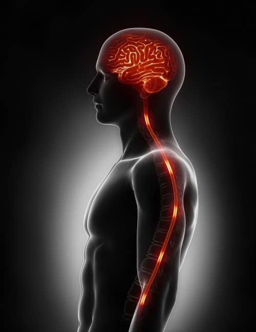Боли в голове от нарушений в работе мозга