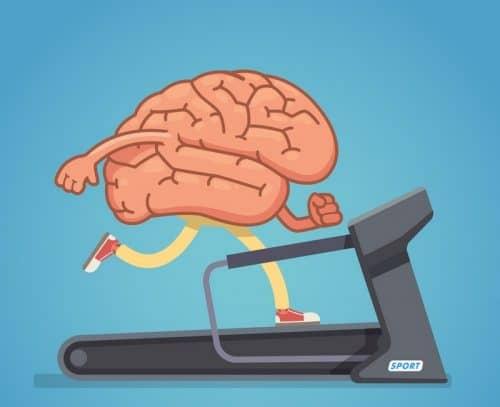 Что делать для правильной работы мозга?