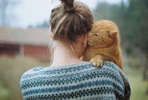 Кошки продлевают жизнь