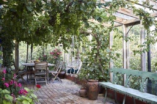 Идеи садового участка