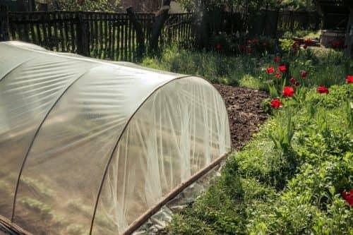 Подготовка к началу огородного сезона